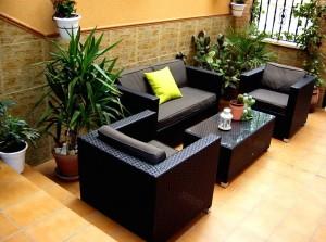 en nuestras jardineras puedes colocar varias especies de plantas las cuales pueden hacer diferentes cosas por ti si quieres que un determinado espacio